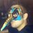 BTRippon profile