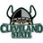 CSUVikingsHoops profile