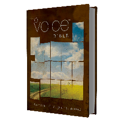 The Voice Bible Social Profile