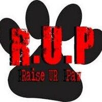 R.U.P (RAISE UR PAW)   Social Profile