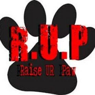 R.U.P (RAISE UR PAW) | Social Profile