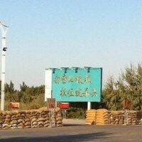 Zhangga | Social Profile