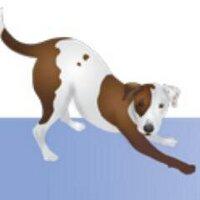 CanineCancer.org.au   Social Profile