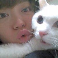 datshu,닷슈 | Social Profile