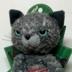 上条茜◆反核猫 Social Profile