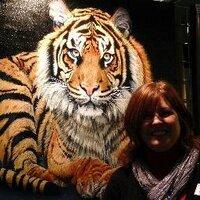 Sue Payton | Social Profile