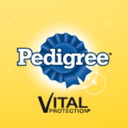Photo of PedigreeCol's Twitter profile avatar