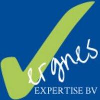 VergnesExperts