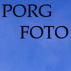 Porg Foto