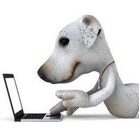 D for Dog | Social Profile