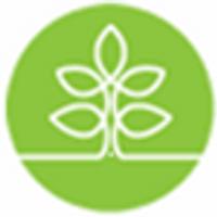 seedlingsgroup  | Social Profile