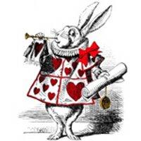 Alice | Social Profile