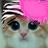 @Pixacat