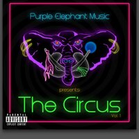 PurpleElephantMusic | Social Profile