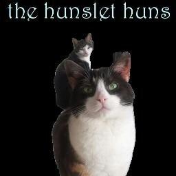 TheHunsletHuns Social Profile