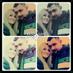 @esrasahiin_