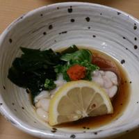 野酢太郎 | Social Profile