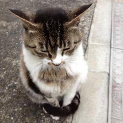 倉本さおり | Social Profile