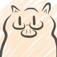 ぶーさん/raydive | Social Profile