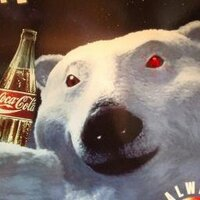 곰 | Social Profile
