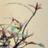 春華乃会 syunka4 のプロフィール画像