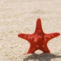 呼噜海 | Social Profile
