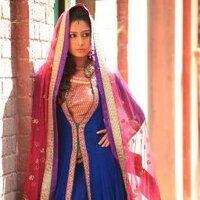 @farnaz_shetty