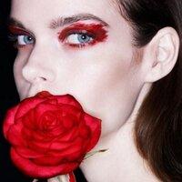 Meghan Collison | Social Profile