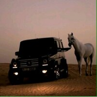 @qadi_saleh