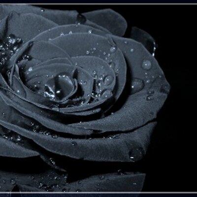 Чорні Троянди (@Edvard_Norton)