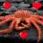 KingCrab_Lover