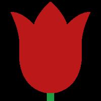 Collisonflowers
