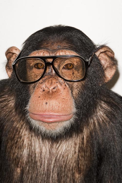 Terry Richardson Social Profile