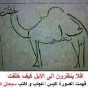 وحيد الشافعى (@01011211699) Twitter