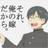 The profile image of maybe_sakushi