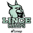Photo of Lincecamps's Twitter profile avatar