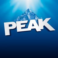 PEAK Auto   Social Profile