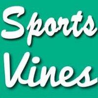 SportVlnes