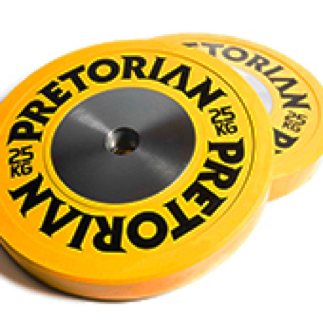Pretorian Social Profile