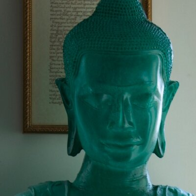 Blue Buddha ブルー仏レディー | Social Profile