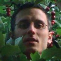 Martin Homola   Social Profile