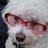 The profile image of naruru01