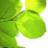 greentax1 greentax1 のプロフィール画像