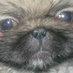 Blogc4sting422's Twitter Profile Picture