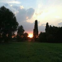 sunset  | Social Profile