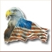 Daily American News's Twitter Profile Picture