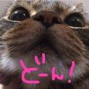 ぽにょ2(・ω・) (@0030609) Twitter
