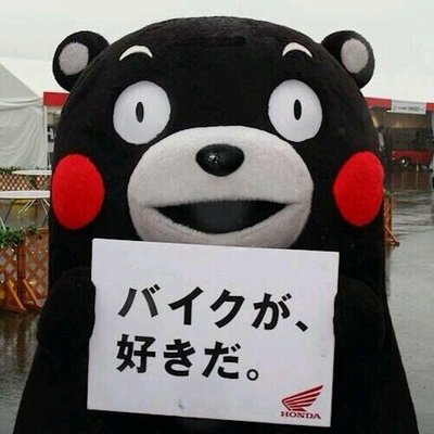 にゃんぴ~   Social Profile