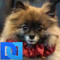 JAN | Social Profile