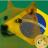 @brasildogecoin
